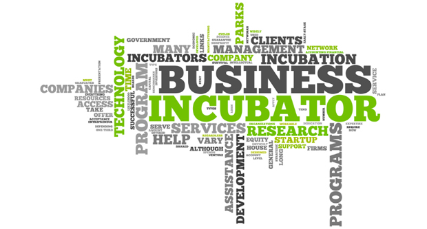 Business Incubators and Accelerators