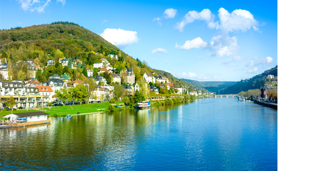 Drink Some Riesling from the Rhine