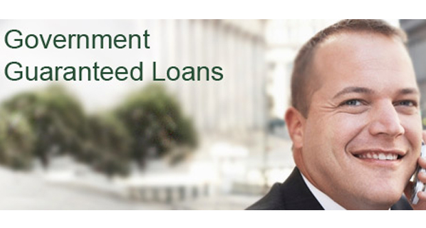 Government Guaranteed Loans